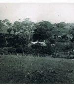 Distanct photo of original Anacotilla Cottage, late 1800s