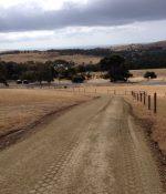 Looking toward entrance along new gravel roadway
