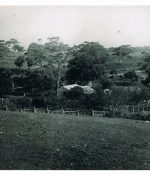 Distant photo of the Anacotilla homestead, late 1800